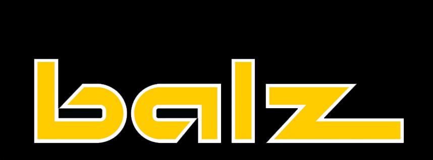 http://www.balz-holz.ch/nl/design/balz_logo.jpg